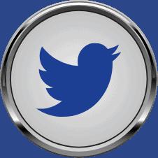 Twitter icon.